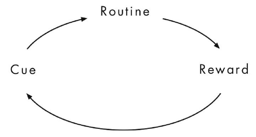 The Habit Loop